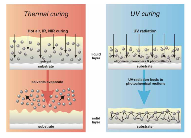 thermal curing and UV curing