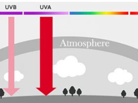 What is UV Light?